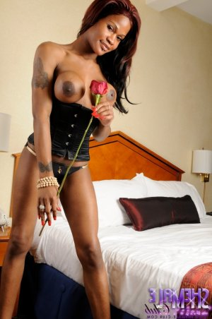 Anielle escort croate au Perray-en-Yvelines